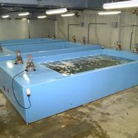 水槽・陸上養殖