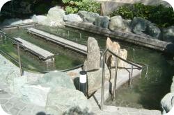 flow-pool2